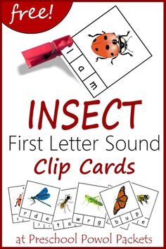 Print and go! Insect themed first letter sound recognition clip cards! Free printable for preschool and kindergarten! Preschool Bug Theme, Preschool Literacy, Free Preschool, Preschool Printables, In Kindergarten, Preschool Letters, Literacy Centers, Preschool Garden, Preschool Ideas