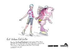 'Get to know fish better' with the Good Fish Guide – Creative Review