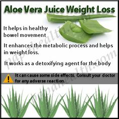 The Truth behind Aloe Vera Juice Weight Loss: Aloe Vera is a bitter tasting herb that enhances the inner health and help in weight loss.