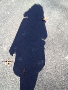 Shadow at Antioch College