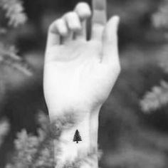 Este adorable árbol de hoja perenne. | 25 Magníficos tatuajes para cualquier amante de la naturaleza