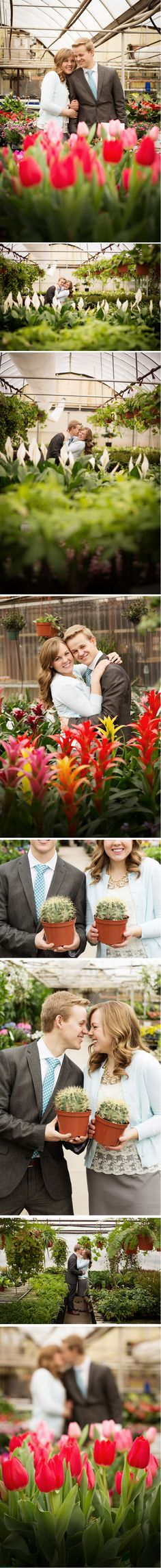 Engagement Photos In Local Greenhouse The Perfect Way To Show Some Extra Color During Winter Months At J Nursery Layton Utah Luddington