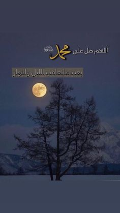 Arabic Quotes, Islamic Quotes, Blessed Friday, Beautiful Quran Quotes, Islam Facts, Prophet Muhammad, Allah, Iphone Wallpaper, Religion