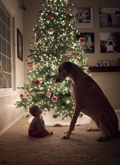 Friends for life - #christmas #baby #photography