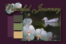 $34.95 This is a painting class that teaches several concepts. How to paint white subjects such asorchid flowers, a white duck and water reflections? This is an introductory course forthe beginner to intermediate painter who also wishes to understand the principles of value and how to apply them. While working on a dark value background usingwet in wet blending techniques, students learn how to control light and use value to create contrast.