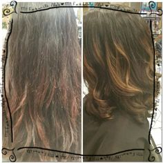 Before and after color/cut
