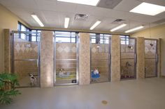 Love the tile detail and tall doors Western Carolina Regional Animal Hospital: Kennel Run Systems by Shor-Line Dog Boarding Kennels, Pet Boarding, Dog Kennels, Dog Kennel Designs, Kennel Ideas, Build A Dog House, Shelter Design, Pet Hotel, Pet Resort