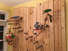 Great idea if you have wall space but no floor space – Anima Care Parrot Perch Diy, Diy Parrot Toys, Diy Bird Toys, Bird Perch, Bird Mom, Crazy Bird, Cockatiel Toys, Budgies, Homemade Bird Toys