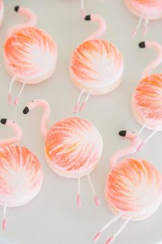 these flamingo macarons are making our party dreams come true