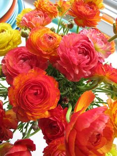 LOVE the colour of these ranunculus flowers!