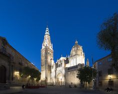 Toledo Cathedral. - Toledo cathedral, Spain in the blue hour.