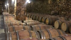 A New Wine Country in Baja - California Report