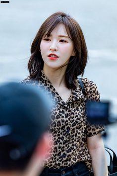 Asian Short Hair, Kpop Hair, Get Skinny Legs, Wendy Red Velvet, Velvet Hair, Aesthetic Hair, Cute Hairstyles, Hairstyle Short, Seulgi