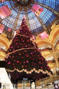 The Christmas tree, Gallerie Lafayette, Paris, France. Been here, but the tree is decorated different every year, I didn't get to see it this pretty.