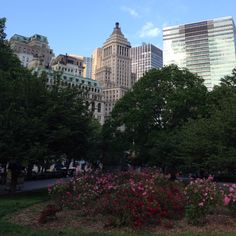 Battery Park Looking Toward Financial District