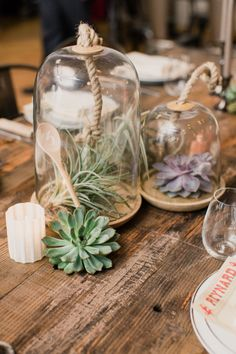 Air plant decor: http://www.stylemepretty.com/new-york-weddings/new-york-city/brooklyn/2015/06/30/organic-modernist-garden-wedding-in-brooklyn/ | Photography: Mademoiselle Fiona - http://www.mademoisellefiona.com/