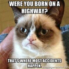Grumpy Cat    heh-heh-heh