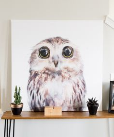 Make over an old canvas // Large DIY Owl Art using a tapestry