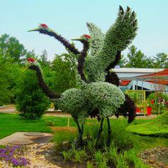 Park Bahçe düzenleme
