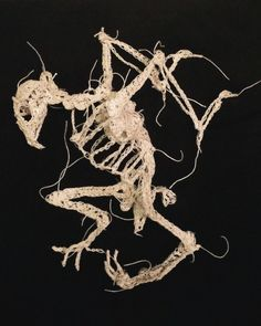 Caitlin T. McCormack; crocheted fossil