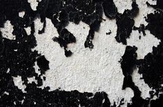 Black Like Who? Rachel Dolezal's Harmful Masquerade - The New York Times