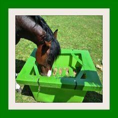 Horse Hay Saver - Save £10 on the Hay Saver - Slow Feeder : Horse Hay Feeders