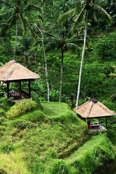 Balinese Spa on the hillside of Ubud, Indonesia Laos, Beautiful Islands, Beautiful Places, Bali Huts, Vietnam, Bali Baby, Village Photography, Thailand, Paradise Island