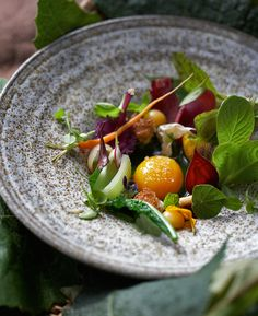 Jim Henkens - food - 18