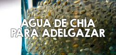 Cómo utilizar el agua de chía para adelgazar - Nutrición y Salud YG - Google+