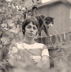 Paul McCartney*