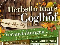 Gasthaus Goglhof - Goglhof - Urlaub am Bauernhof in Fügen im Zillertal