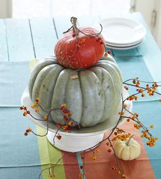 Create a stand-out centerpiece by using an out-of-the-ordinary pumpkin as your focal point. Here, a greenish gray pumpkin was et atop a cake plate and accented with two smaller pumpkins. The look is completed with a branch of bittersweet, twisted around the pumpkins and left to cascade across the table.