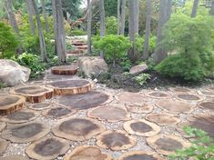 Tree Stump Patio