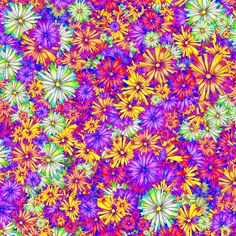 BLOSSOM SEASON SUNSET fabric by paysmage on Spoonflower - custom fabric