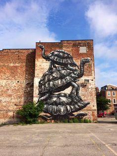 Street art in Richmond, VA. Tortoise trio