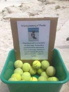 In Loving Memory of Pheobe: Please help yourself to a tennis ball for your dog to enjoy. You may wish to pop it back in the box afterwards for another pooch to enjoy. Remember to live each moment just like your dog, with unconditional love, loyalty, and happiness. #artcrush
