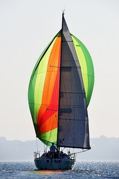 photographer Frédéric Le Mouillour does an exceptional job at capturing this spinnaker.