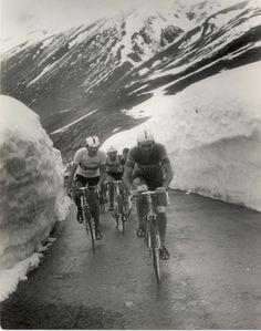 Giro d'Italia passo dello stelvio