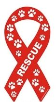 animal shelter support - rescue ribbon  please consider adoption the next time you want a new family member