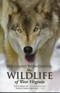 I checked out  Wild and Wonderful: The Wildlife of West Virginia on Lish, $9.95 USD