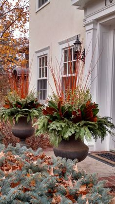 outdoor arrangements in winterYou can find Fall planters and more on our website.outdoor arrangements in winter Christmas Urns, Christmas Planters, Fall Planters, Outdoor Planters, Outdoor Christmas, Christmas Decorations, Xmas, Christmas Arrangements, Outdoor Gardens