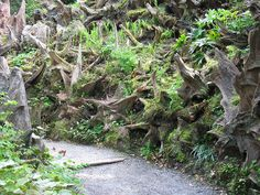 Stumpery - Biddulph Grange Garden - Biddulph {april 2011} by westher, via Flickr