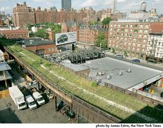 The High Line before it's new life began.