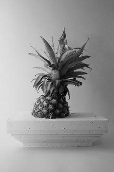 ananas art.