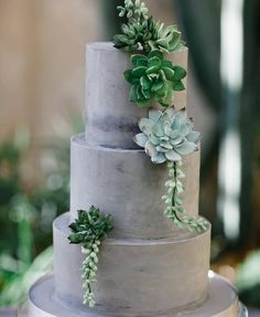 Of all of the succulent and succulent inspired cakes... THIS is THE one!!! @chrisbarberphotography - #weddingcake #cakecakecake #weddingflowers #weddingcolors #weddingideas #weddingplanning #weddinginspiration #succulentcake
