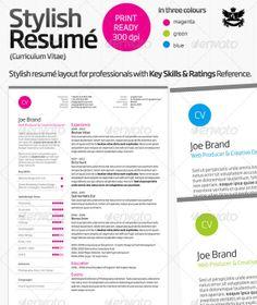 colourful resume templates 37 stylish resume templates vandelay