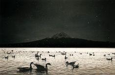 Yamamoto, Black White Photos, Black And White Photography, Seven Swans, Elsa Schiaparelli, Night Pictures, Art Corner, Mount Fuji, Swan Lake