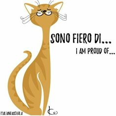 Spanish: Estoy orgulloso de.../ French: Je suis fière de...