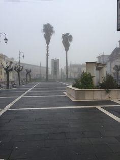 Sorpresa: Casagiove si sveglia avvolta nella nebbia a cura di Redazione - http://www.vivicasagiove.it/notizie/sorpresa-casagiove-si-sveglia-avvolta-nella-nebbia/