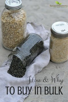 Learn how and why to buy food in bulk- Scratch Mommy